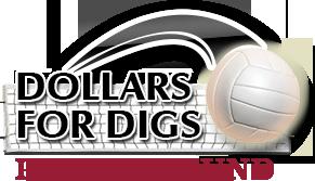volleyball-logo